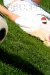 Soccer Babes - Poland