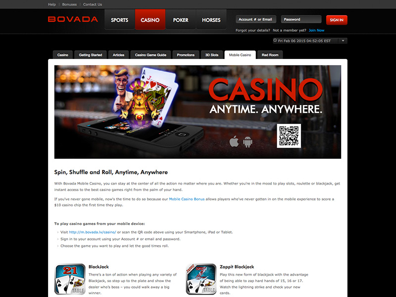 Bovada Security