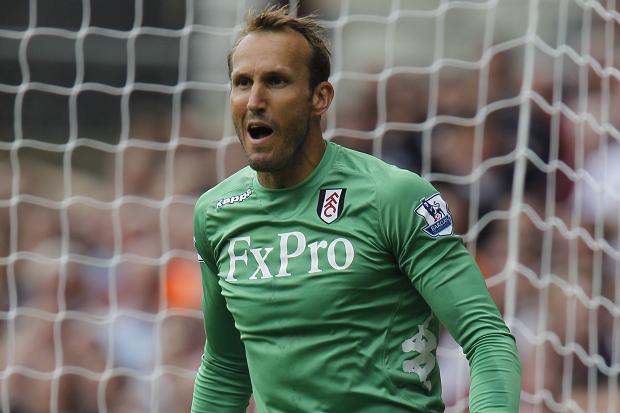 Fulham boss Martin Jol has revealed goalkeeper Mark Schwarzer has been offered a contract extension by the club.