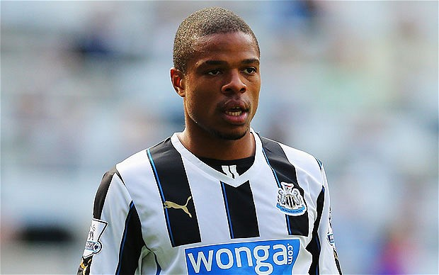 France international forward Loic Remy, currently on loan at Newcastle United, will consider his long-term future next summer.