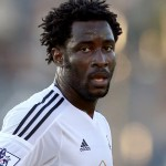 Manchester City F.C. boss Manuel Pellegrini has played down reports linking the English champions with a January move for Swansea City striker Wilfried Bony.